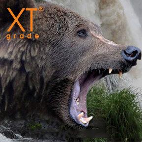 XT-synthetic