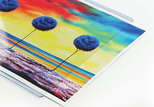 print-sleeve